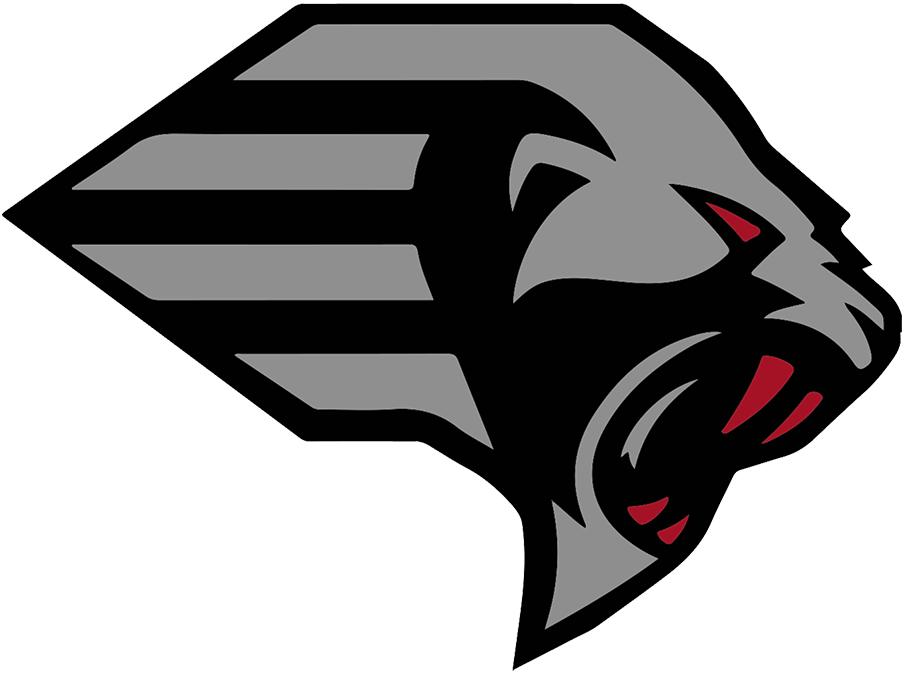 New York Guardians Logo Primary Logo (2020-Pres) -  SportsLogos.Net