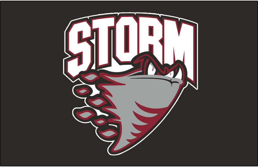 Guelph Storm Logo Jersey Logo (1997/98-2006/07) -  SportsLogos.Net
