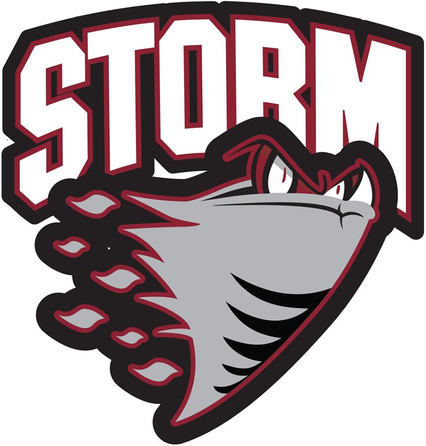 Guelph Storm Logo Primary Logo (1997/98-2006/07) -  SportsLogos.Net