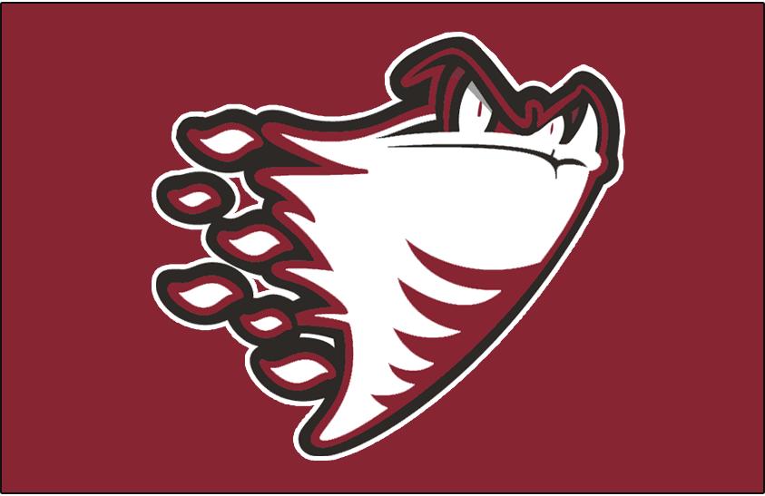 Guelph Storm Logo Jersey Logo (2000/01-2002/03) -  SportsLogos.Net