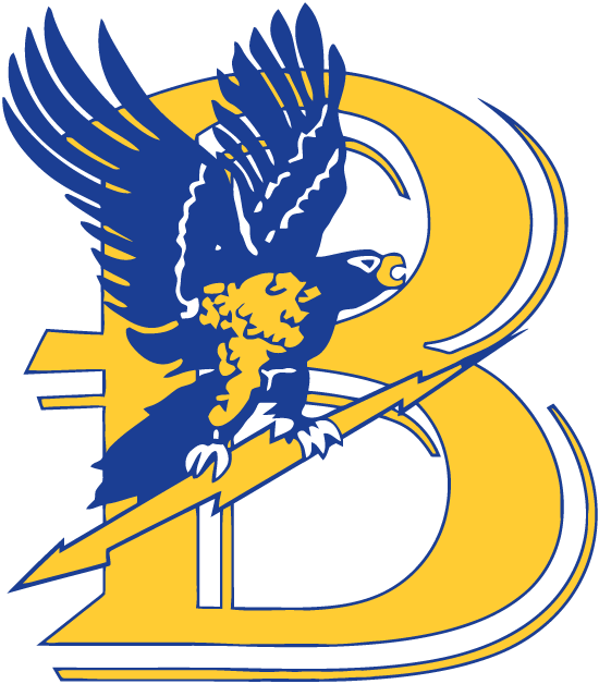 Bentley Falcons Logo Primary Logo (1988-2012) -  SportsLogos.Net