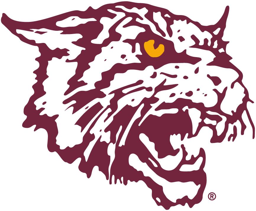 Bethune-Cookman Wildcats Logo Alternate Logo (2000-2015) -  SportsLogos.Net