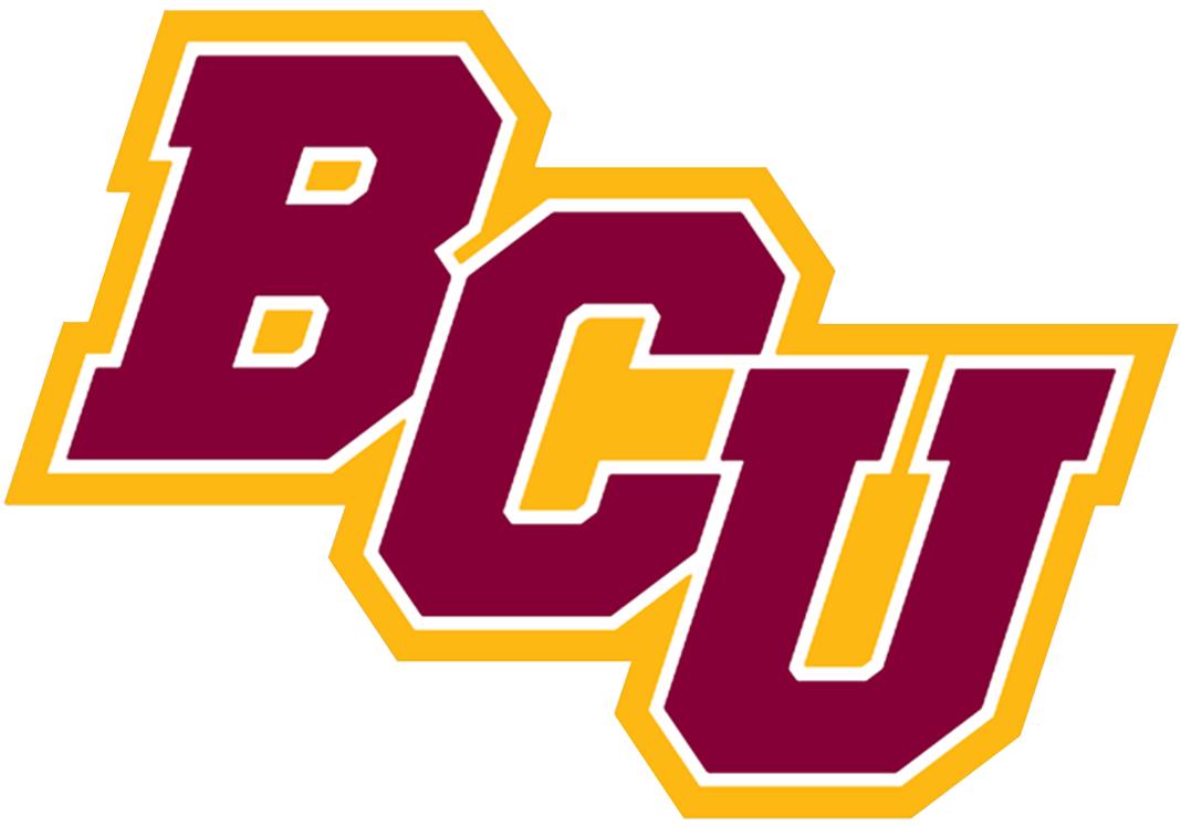 Bethune-Cookman Wildcats Logo Secondary Logo (2016-Pres) -  SportsLogos.Net
