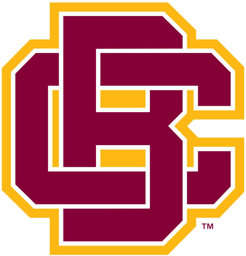 Bethune-Cookman Wildcats Logo Primary Logo (2016-Pres) -  SportsLogos.Net