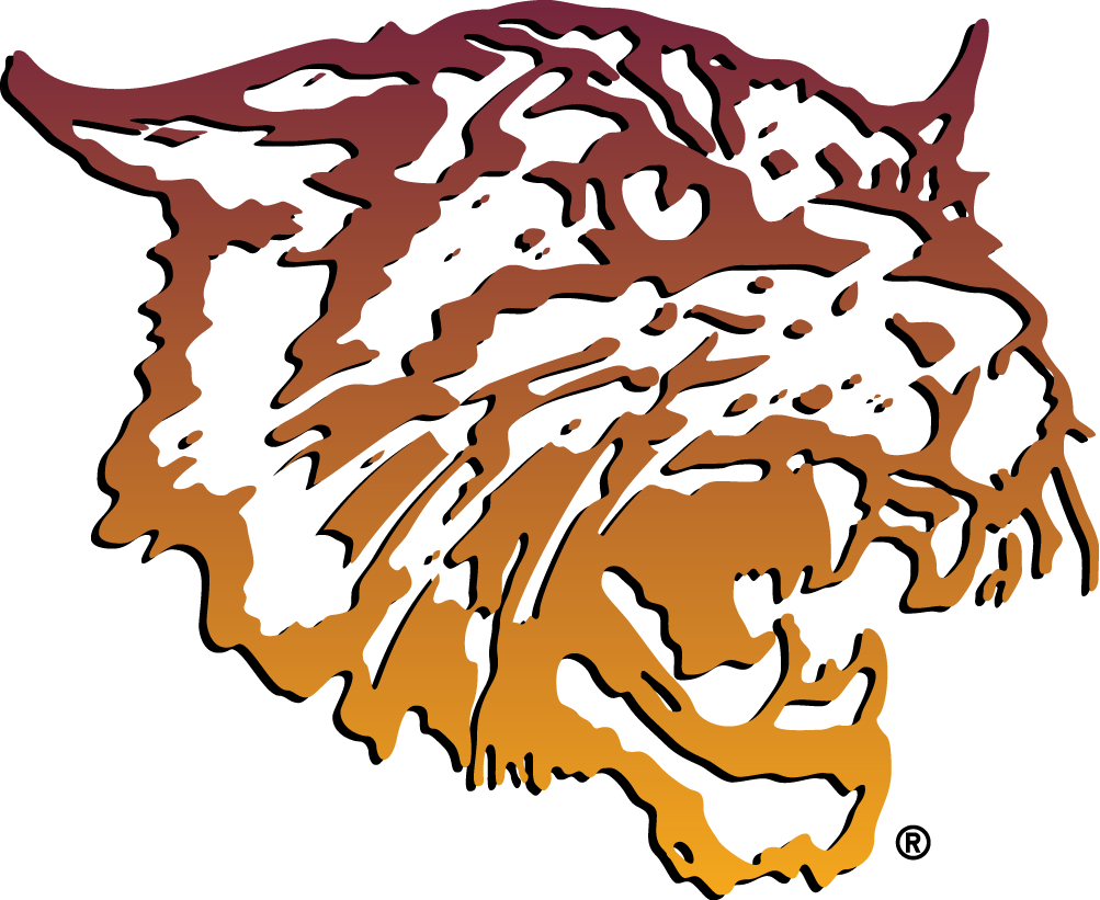 Bethune-Cookman Wildcats Logo Primary Logo (2000-2015) - A wildcat head in an orange to yellow gradiant SportsLogos.Net
