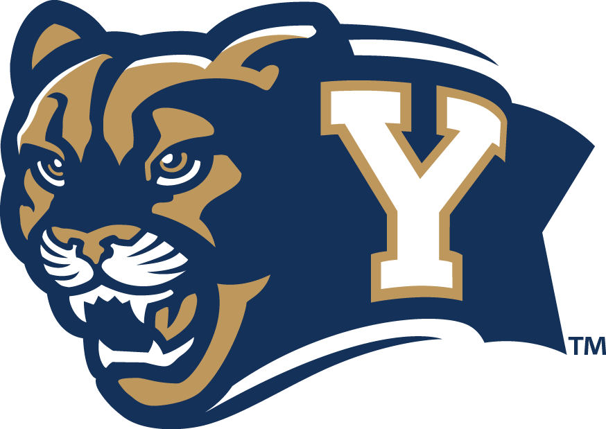 Brigham Young Cougars Alternate Logo - NCAA Division I (a ...