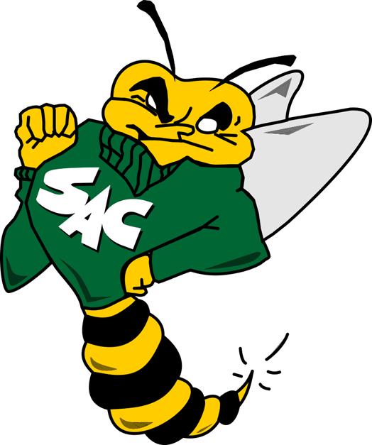 Sacramento State Hornets Logo Primary Logo (1991-2003) - Hornet wearing a sweatshirt SportsLogos.Net