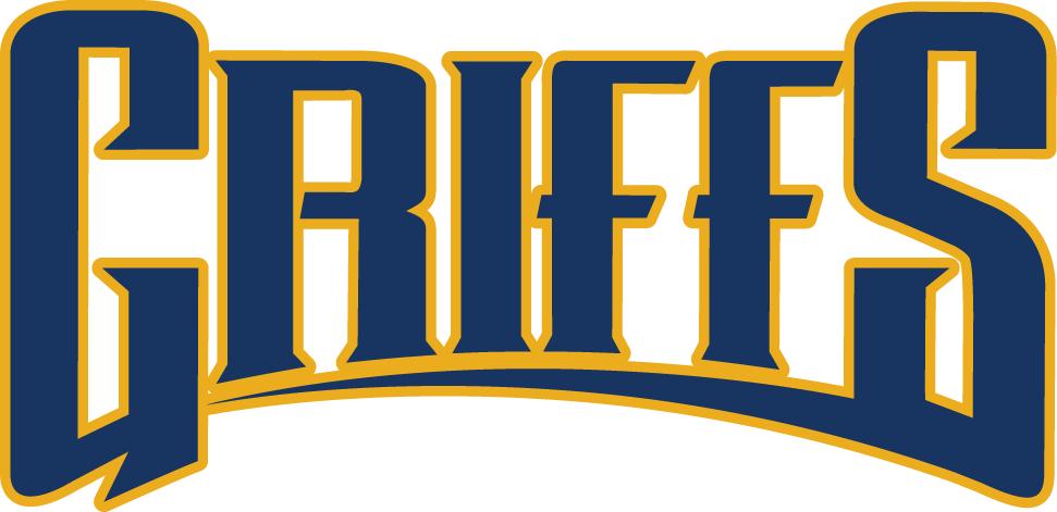 Canisius Golden Griffins Logo Wordmark Logo (2006-Pres) -  SportsLogos.Net
