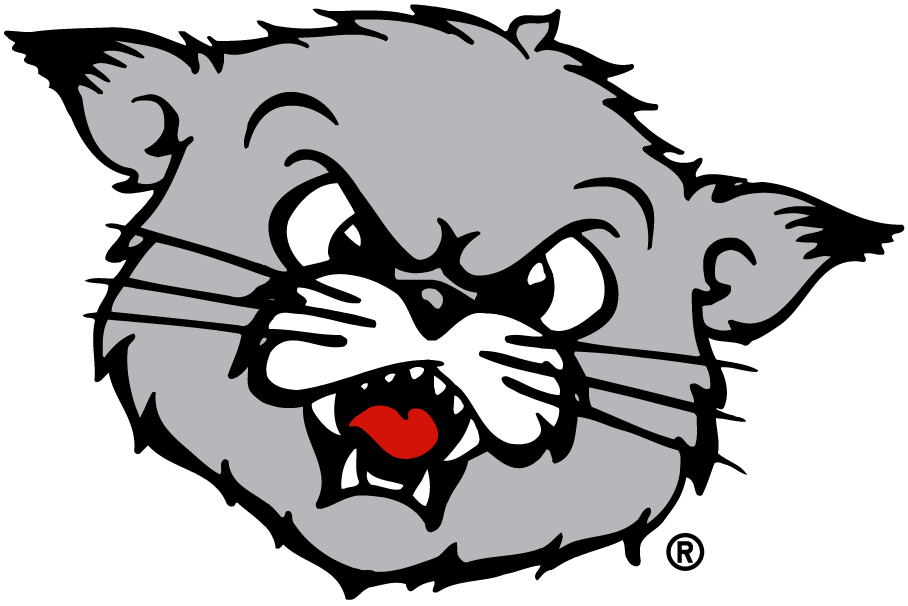 [Image: 4993_cincinnati_bearcats-partial-1990.png]