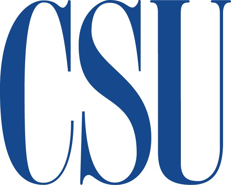 Coppin State Eagles Logo Secondary Logo (2004-2016) -  SportsLogos.Net