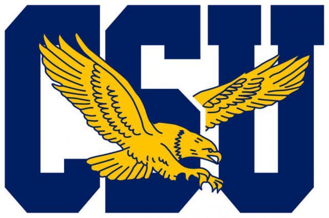 Coppin State Eagles Logo Primary Logo (2017-Pres) -  SportsLogos.Net