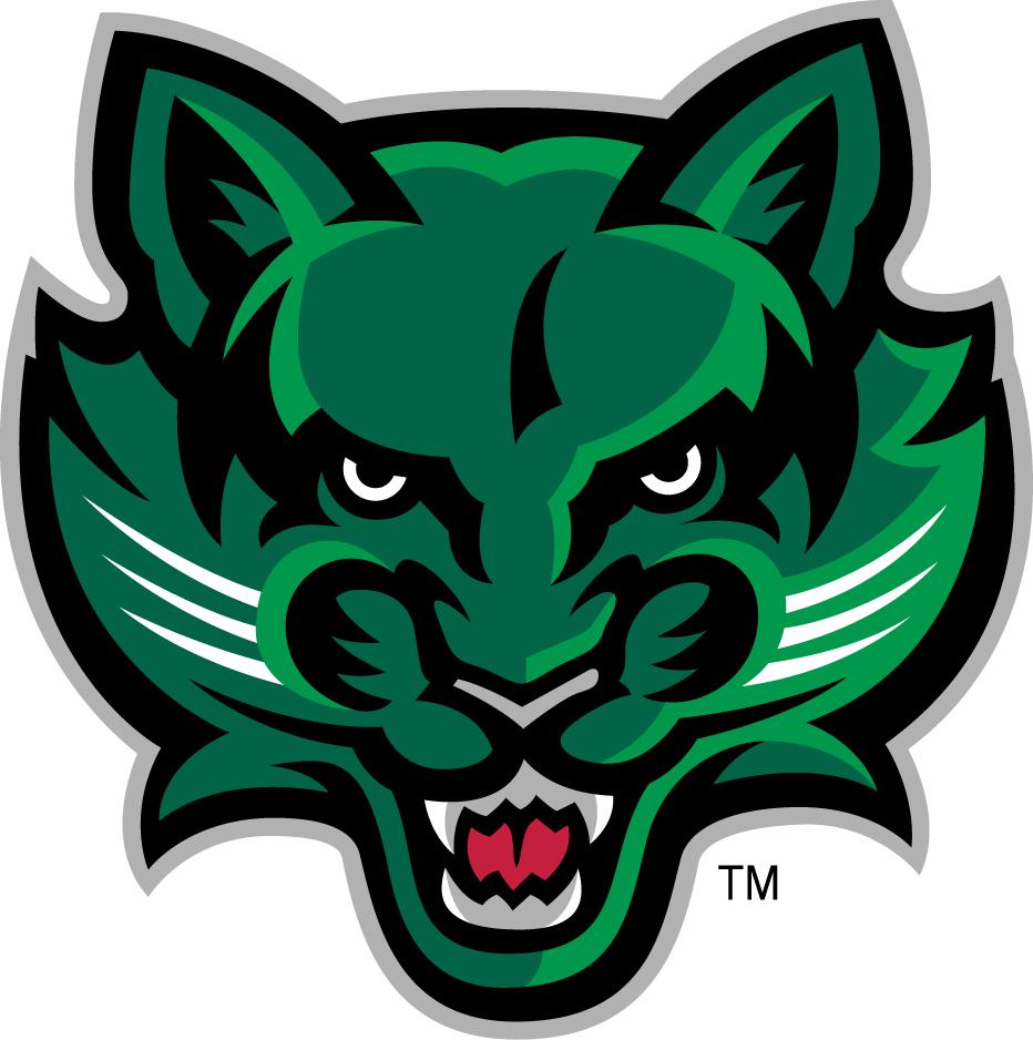 Binghamton Bearcats Logo Secondary Logo (2001-Pres) -  SportsLogos.Net