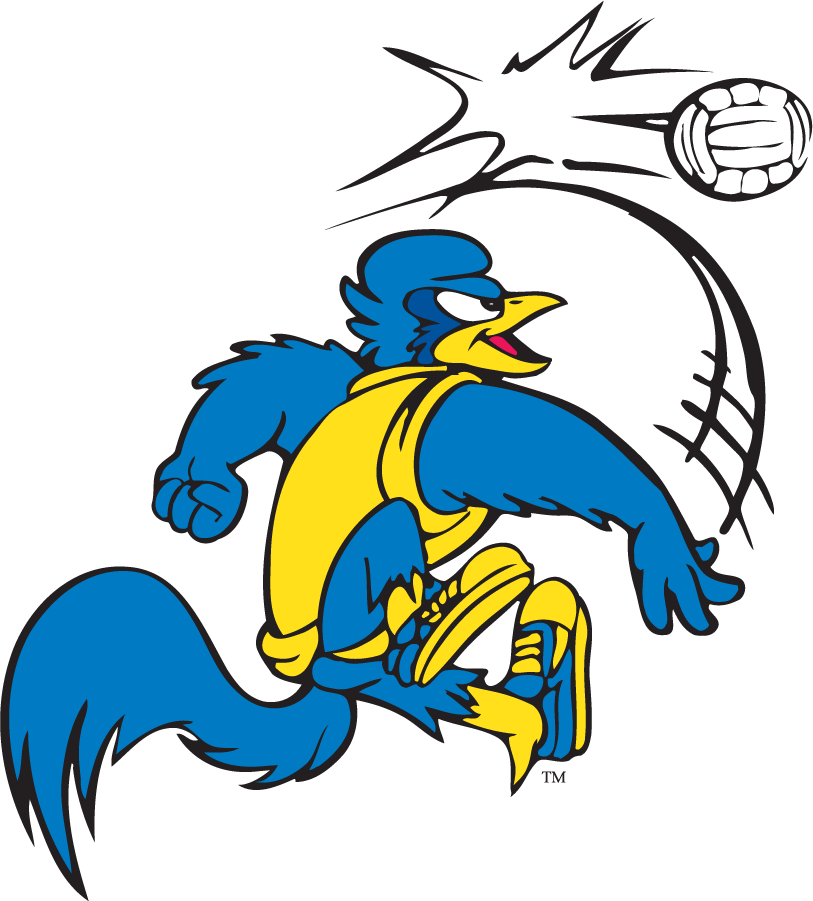 Delaware Blue Hens Logo Mascot Logo (1999-2009) - Volleyball YoUDee SportsLogos.Net