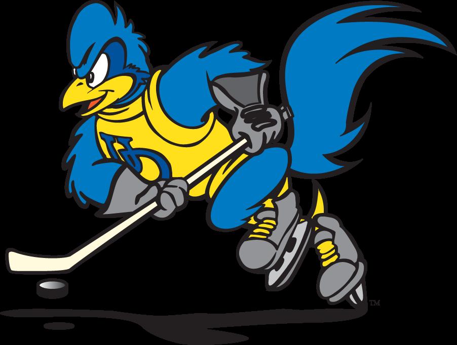 Delaware Blue Hens Logo Mascot Logo (1999-2009) - Hockey YoUDee SportsLogos.Net