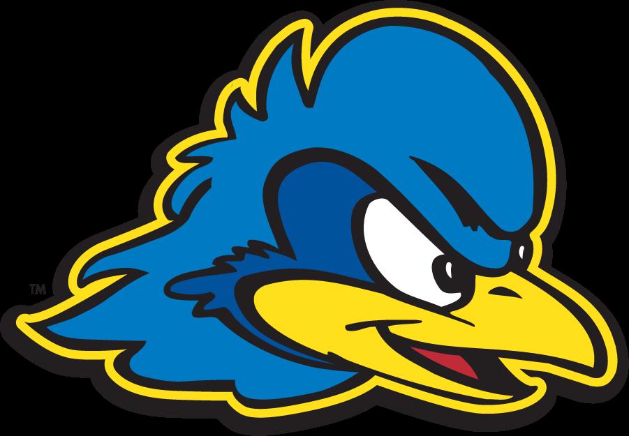 Delaware Blue Hens Logo Secondary Logo (1999-2009) - Blue hen head. SportsLogos.Net