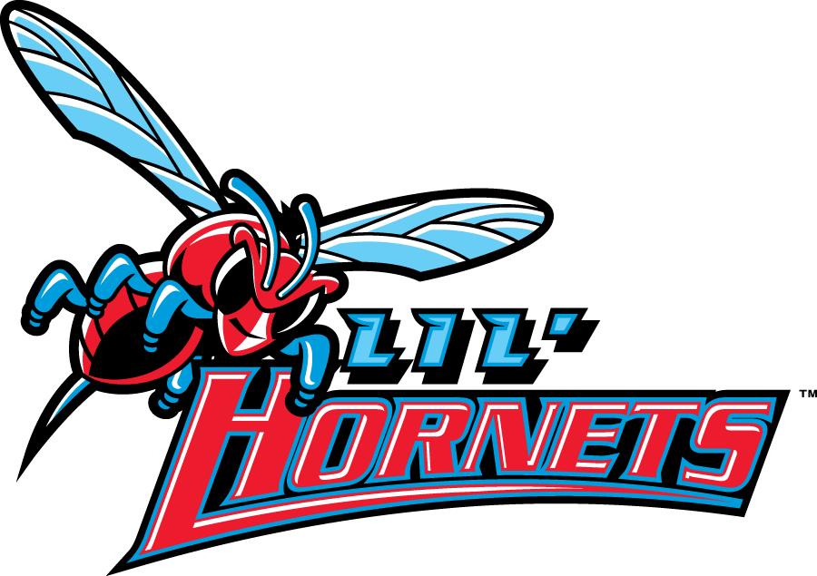 Delaware State Hornets Logo Misc Logo (2004-Pres) - Delaware State Hornets Youth mark 1 - Lil Hornets SportsLogos.Net