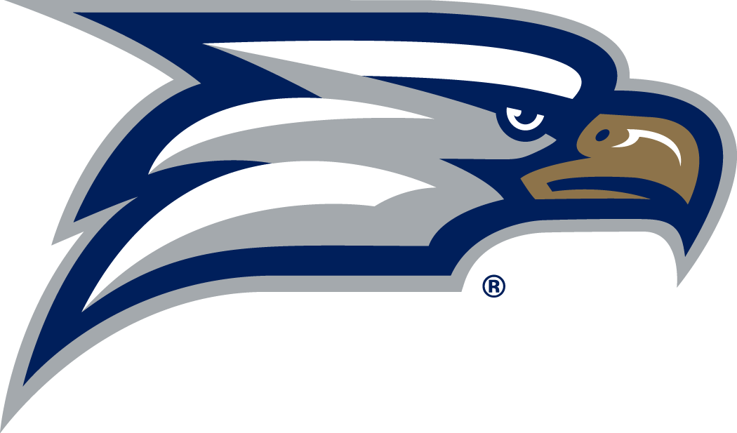 Georgia Southern Eagles Logo Secondary Logo (2010-Pres) -  SportsLogos.Net