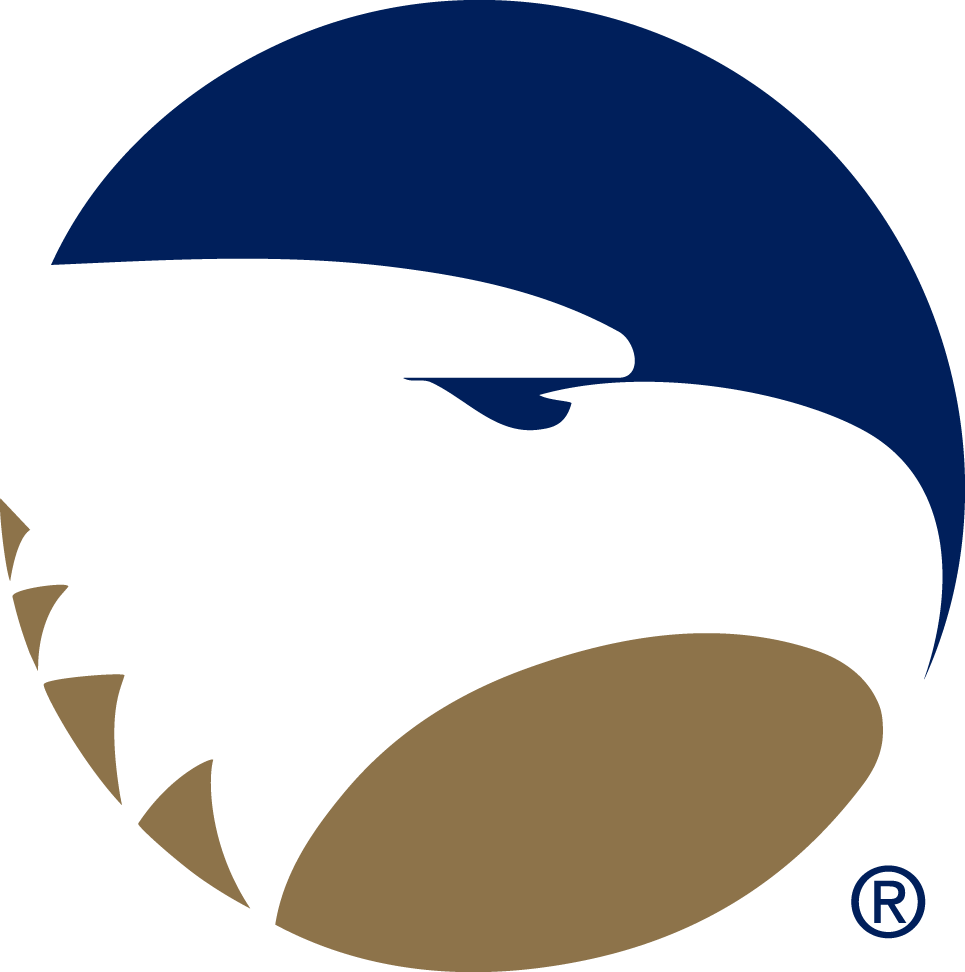 Georgia Southern Eagles Logo Primary Logo (1982-2003) - Eagle head in blue and gold circle SportsLogos.Net
