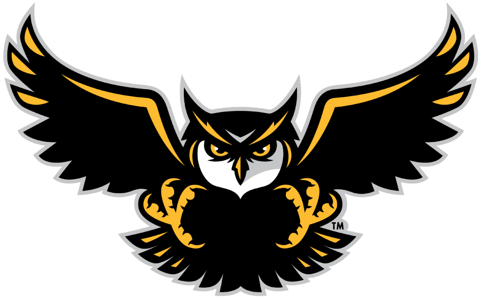 Kennesaw State Owls Logo Alternate Logo (2012-Pres) -  SportsLogos.Net