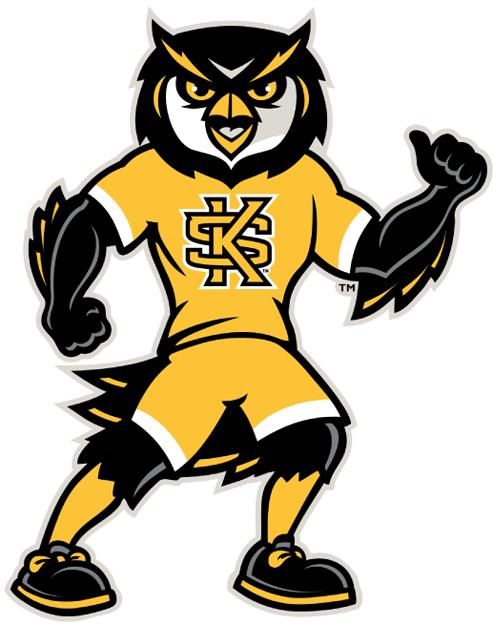 Kennesaw State Owls Mascot Logo Ncaa Division I I M Ncaa I M