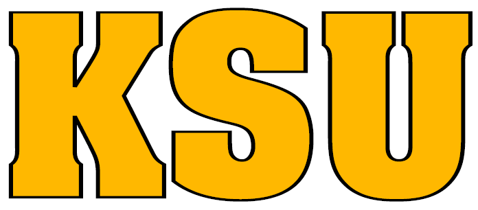 Kennesaw State Owls Mascot Logo - NCAA Division I (i-m ... |Kennesaw State