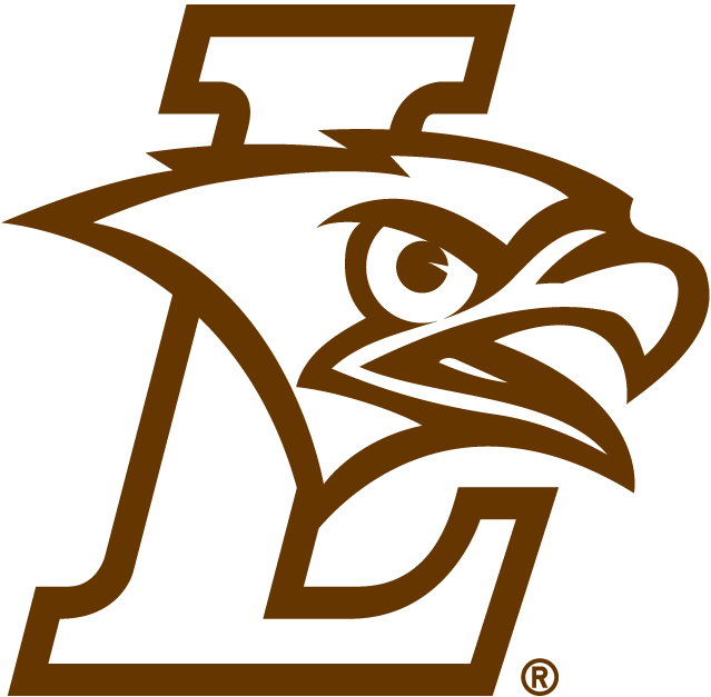 Chrome Metal with Domed Graphics Lehigh University Mountain Hawks Premium Auto Emblem Decal
