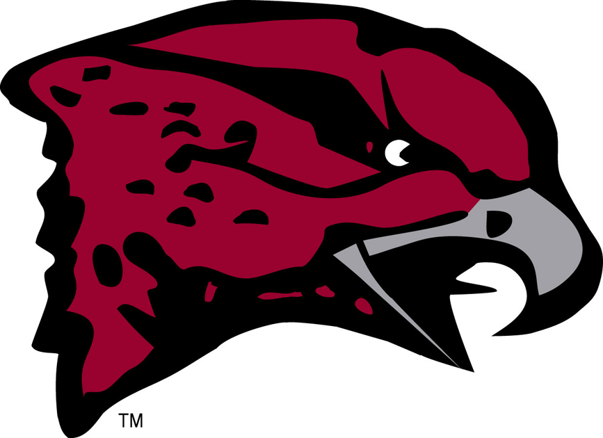 Maryland-Eastern Shore Hawks Logo Primary Logo (2007-Pres) -  SportsLogos.Net