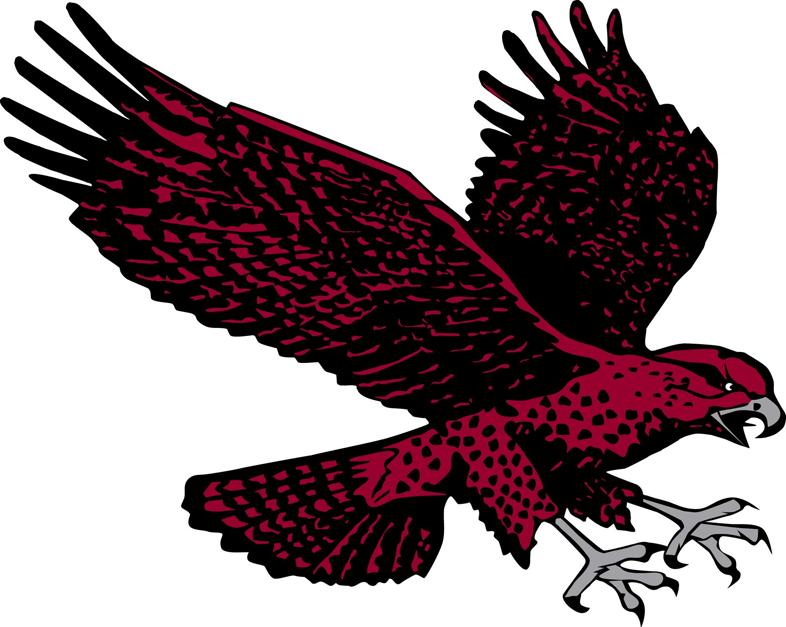 Maryland-Eastern Shore Hawks Logo Secondary Logo (2007-Pres) -  SportsLogos.Net