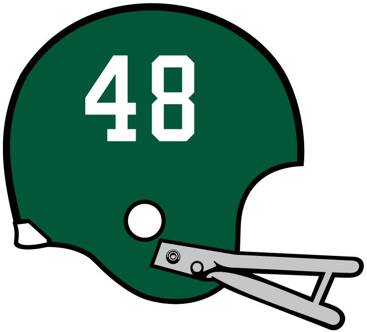 Miami Hurricanes Helmet Helmet (1971) -  SportsLogos.Net