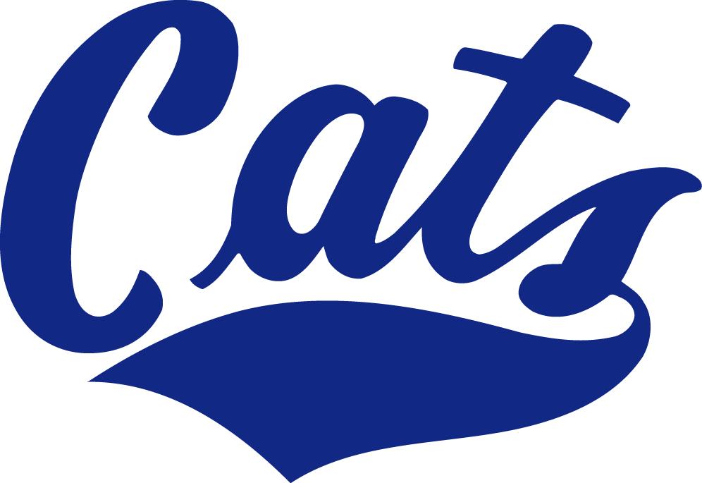 Montana State Bobcats Logo Wordmark Logo (1982-2004) -  SportsLogos.Net