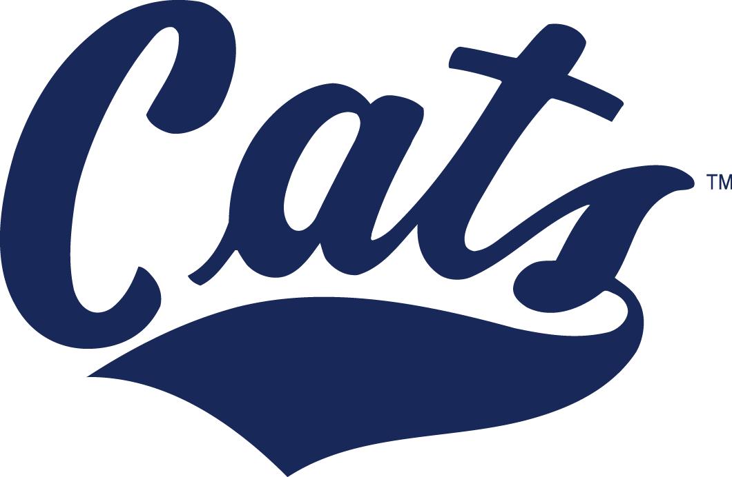 Montana State Bobcats Logo Wordmark Logo (2004-Pres) -  SportsLogos.Net