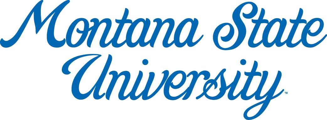 Montana State Bobcats Logo Wordmark Logo (1960-1978) -  SportsLogos.Net