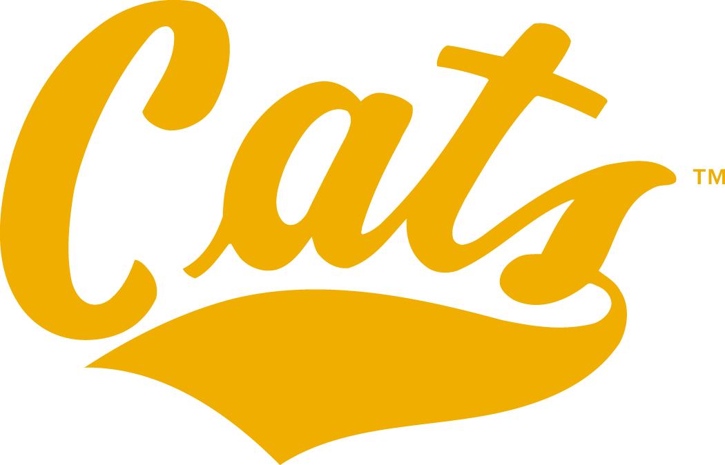 Montana State Bobcats Logo Wordmark Logo (1982-2012) -  SportsLogos.Net