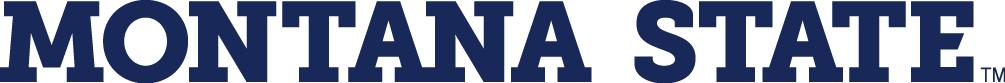 Montana State Bobcats Logo Wordmark Logo (2013-Pres) -  SportsLogos.Net