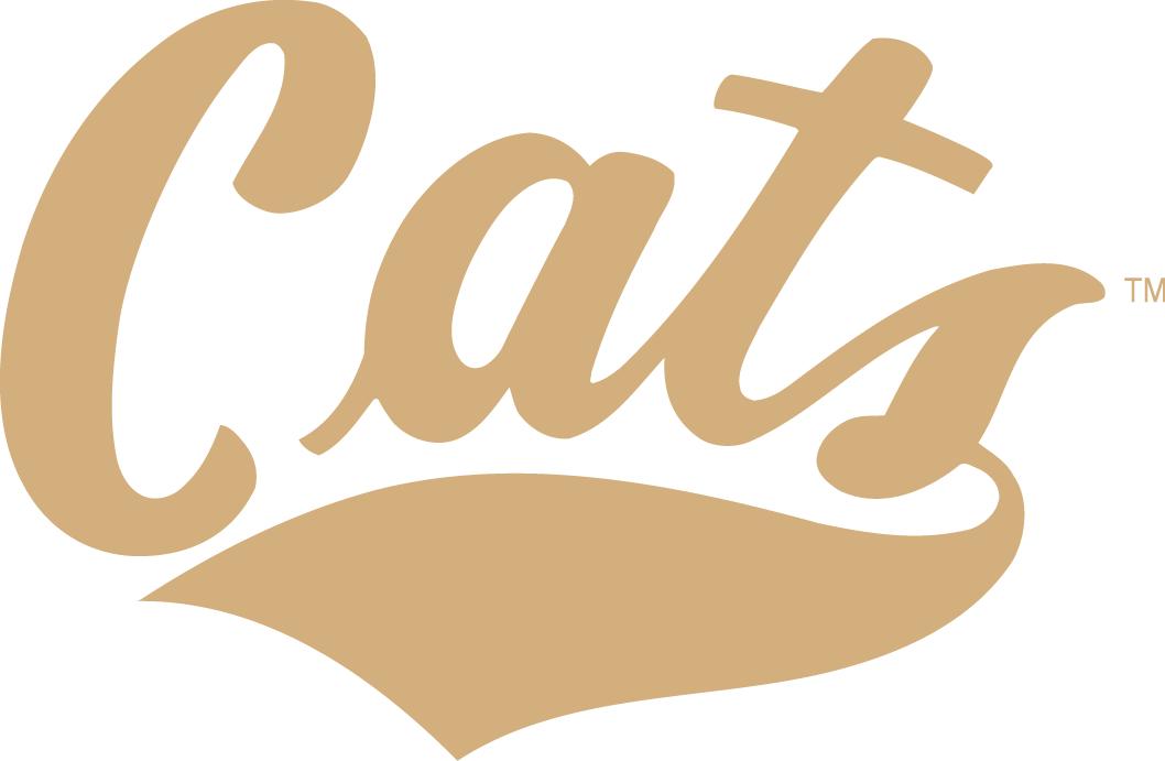 Montana State Bobcats Logo Wordmark Logo (2004-2012) -  SportsLogos.Net