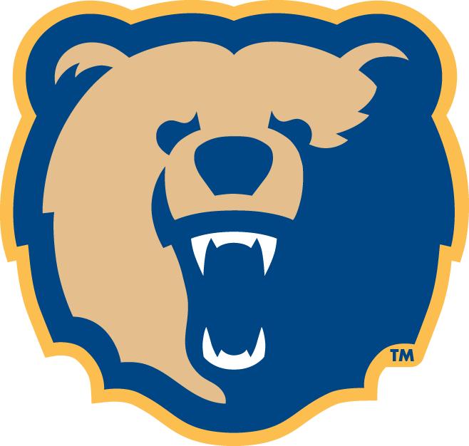 Morgan State Bears Logo Secondary Logo (2002-Pres) - Bear's Head SportsLogos.Net