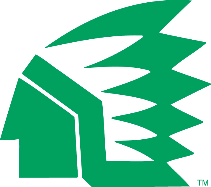 North Dakota Fighting Hawks Logo Primary Logo (1976-1999) -  SportsLogos.Net