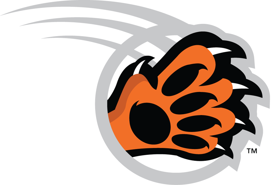RIT Tigers / Coolspotters