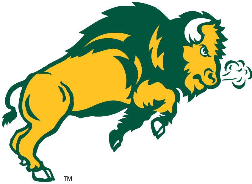 Bison logo - photo#16