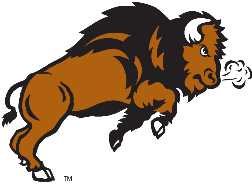 Bison logo - photo#4