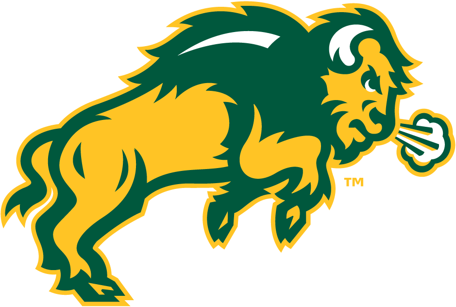 Bison logo - photo#1