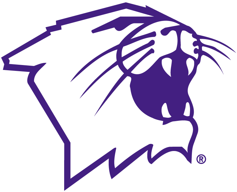 Northwestern Wildcats Partial Logo Ncaa Division I N R