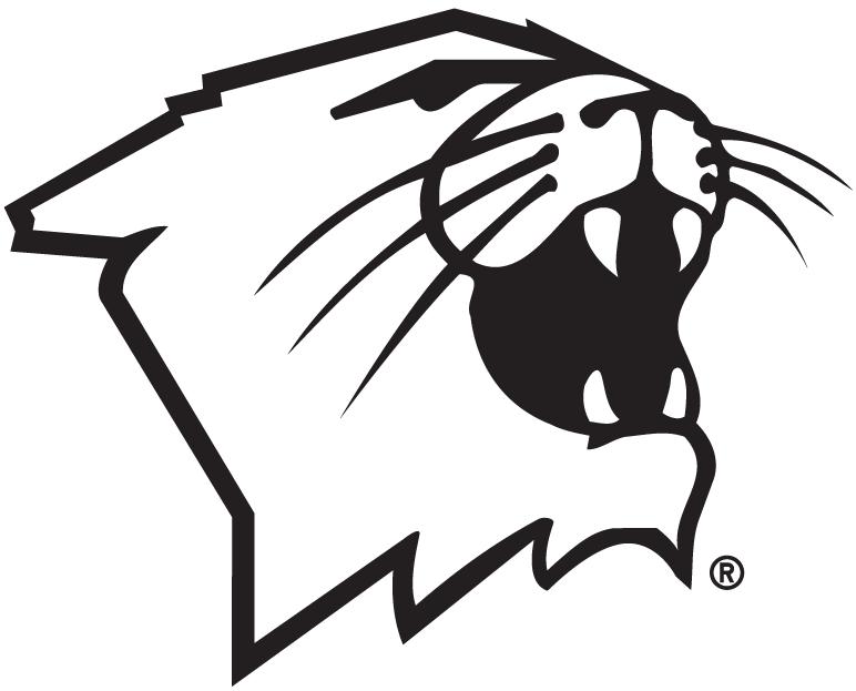 Northwestern Wildcats Logo Partial Logo (1981-Pres) -  SportsLogos.Net