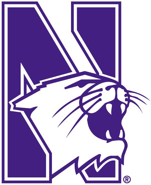 Northwestern Wildcats Logo Alternate Logo (1981-Pres) -  SportsLogos.Net