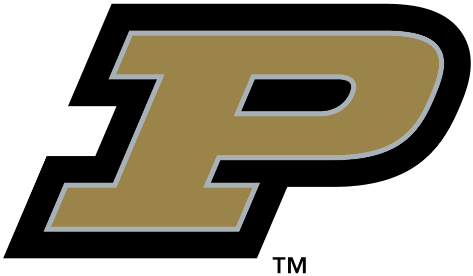 Purdue Boilermakers Logo Primary Logo (2003-2011) - Gold P with black outline SportsLogos.Net