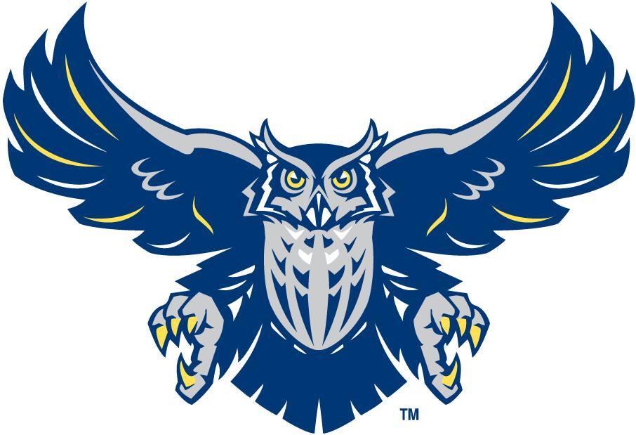 Logo - Angryowl