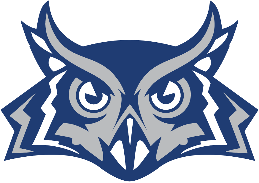 Owl Face Logo - Yes Owls Color