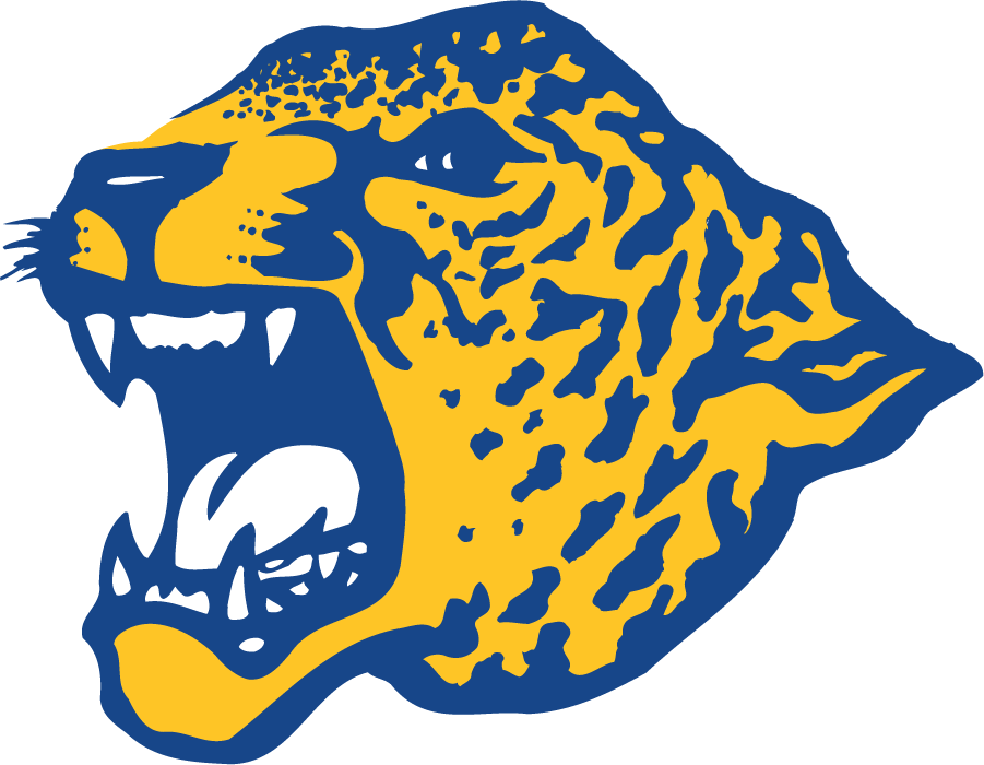 Southern Jaguars Logo Primary Logo (1995-2001) - Left-facing jaguar head used circa 1995 until the change in 2001. Appears in yellow and blue. SportsLogos.Net