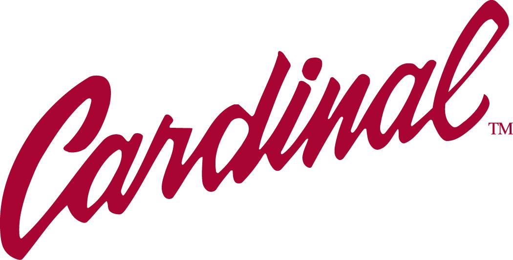 NCAA Stanford Cardinal Team Logo Pin