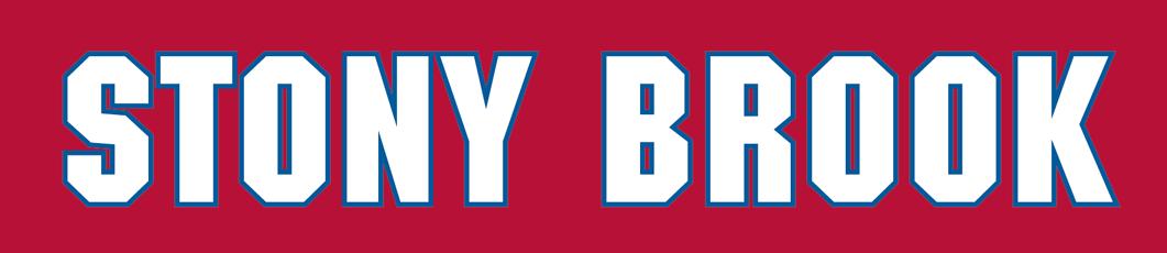 Stony Brook Seawolves Logo Wordmark Logo (2008-Pres) -  SportsLogos.Net